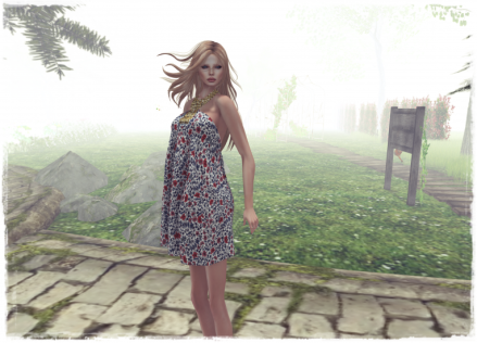 Snapshot_038 blog 3